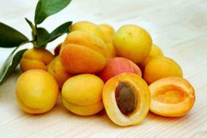 Benefits of Apricots for Body Health