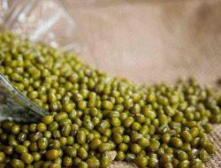 Secret Benefits of Green Beans for Health